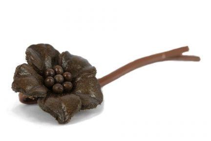 Pince cheveux Chocolat