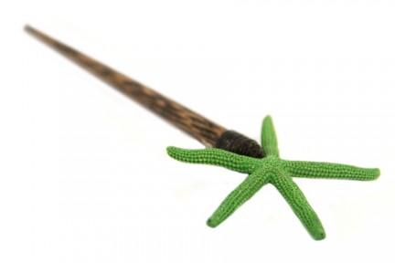 Pic étoile de mer Anis