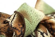 Foulard cheveux Python