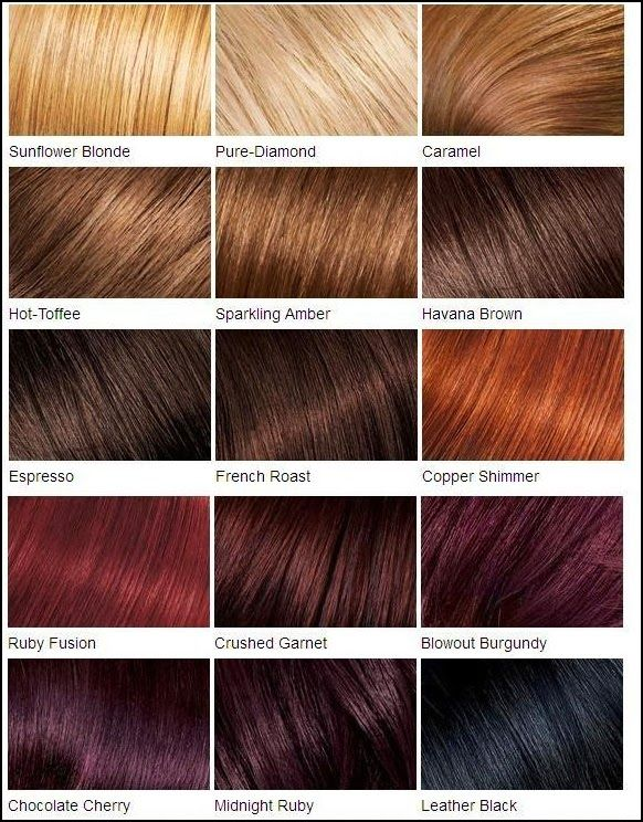 differents types couleurs cheveux